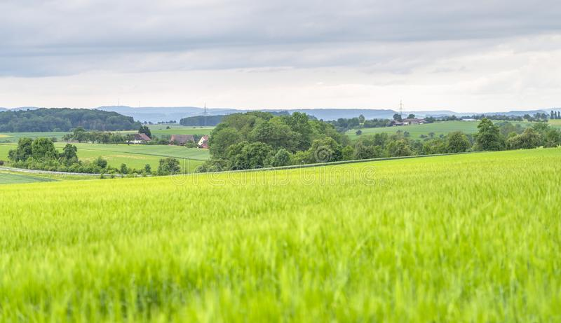 Rural scenery in Hohenlohe royalty free stock photography