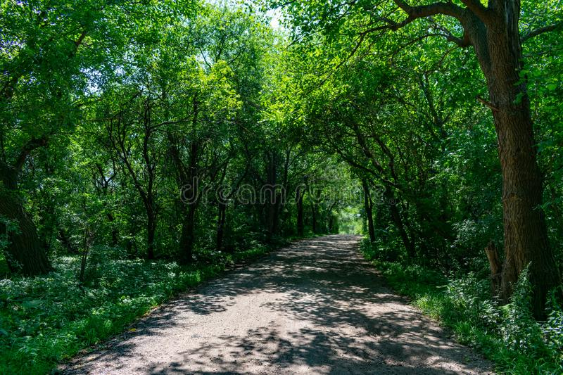 Rural Shaded Dirt Road in a Forest with Green Trees. An empty rural shaded dirt road in a forest with green trees in the Chicago suburb of Lemont Illinois during royalty free stock photos