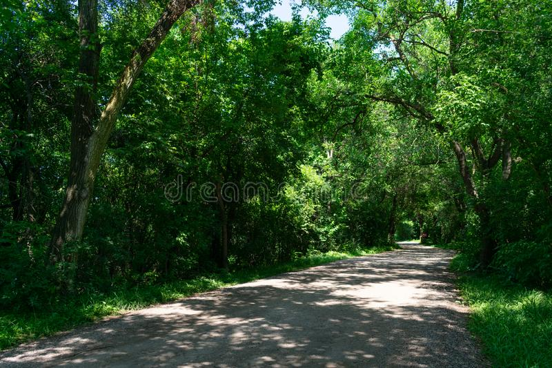 Rural Shaded Dirt Road in a Forest with Green Trees. An empty rural shaded dirt road in a forest with green trees in the Chicago suburb of Lemont Illinois during stock photos
