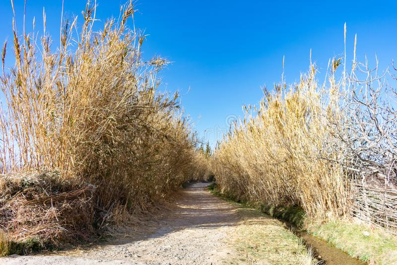 Rural Shaded Path in Midelt Morocco stock photo