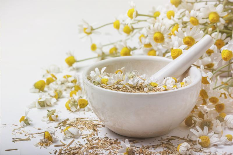 Rural still-life - chamomile crushed in a mortar on the background of a bouquet of daisies royalty free stock photos