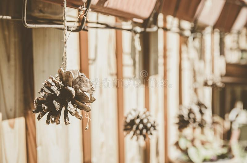 Rural Still Life of Cones. Exterior decor of the house. Rural still life cones. Exterior of the house. Photos taken in the Czech Republic. The beautiful royalty free stock images