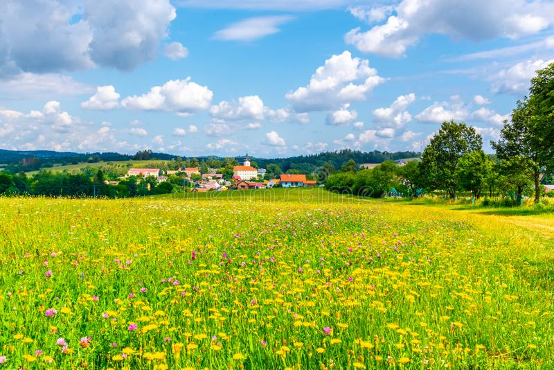 Rural summer landscape with green meadow, blue sky and white clouds. Jistebnice, South Bohemia, Czech Republic stock photography