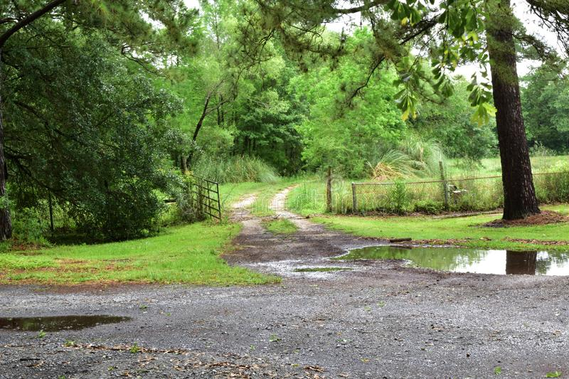 Rural Texas muddy driveway with tire ruts and swing gate. After heavy rain royalty free stock photo