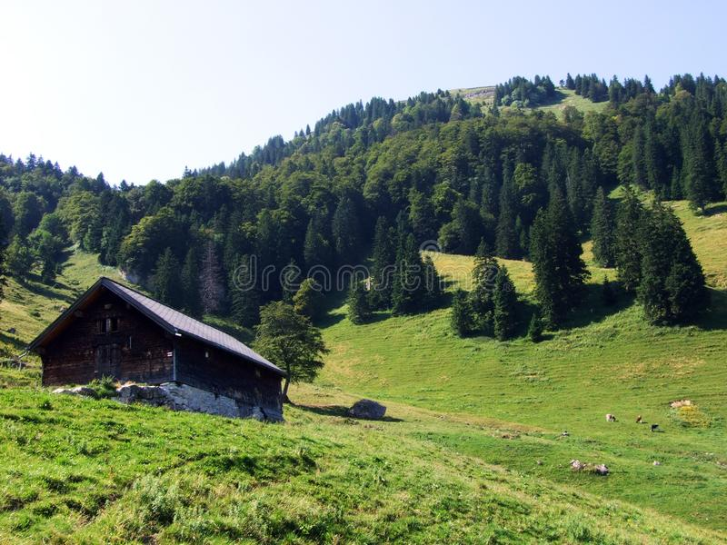Rural traditional architecture and livestock farms on the slopes of Alpstein and in the Rhine valley. Cantons of St. Gallen and Appenzell Innerrhoden stock photos