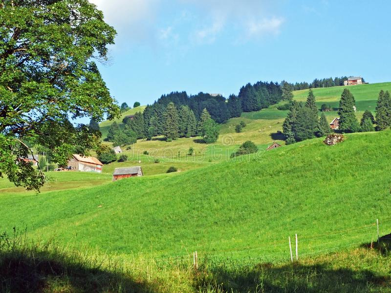 Rural traditional architecture and livestock farms on the slopes of Alviergruppe and in the Rhine valley. Canton of St. Gallen, Switzerland stock image