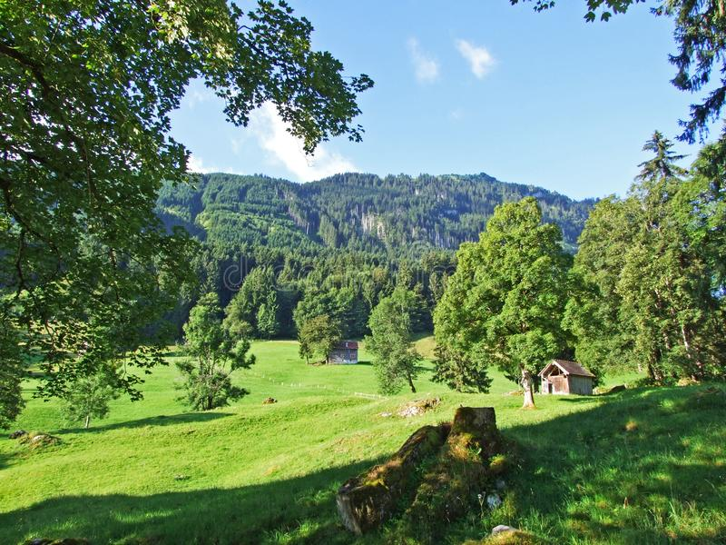 Rural traditional architecture and livestock farms on the slopes of Alviergruppe and in the Rhine valley. Canton of St. Gallen, Switzerland stock images
