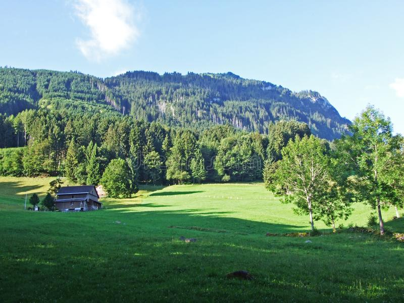 Rural traditional architecture and livestock farms on the slopes of Alviergruppe and in the Rhine valley. Canton of St. Gallen, Switzerland royalty free stock images