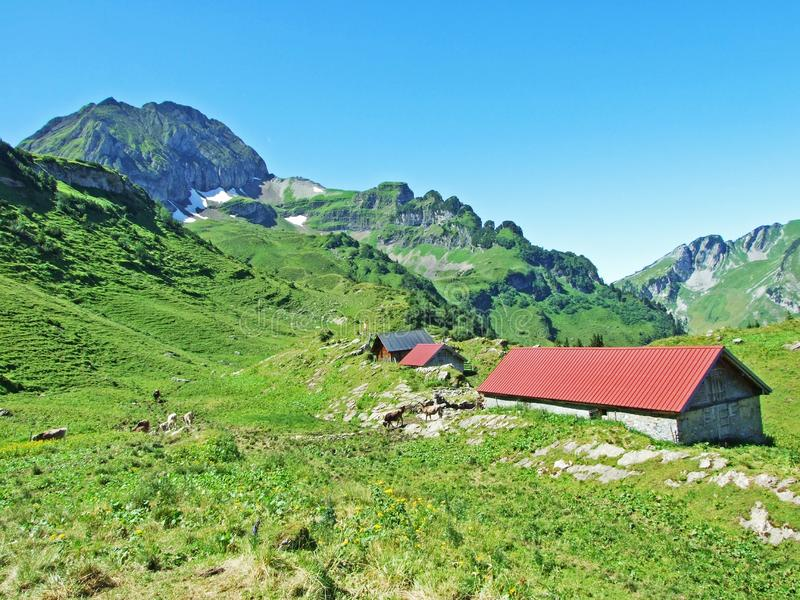 Rural traditional architecture and livestock farms on the slopes of Alviergruppe and in the Rhine valley. Canton of St. Gallen, Switzerland stock photos
