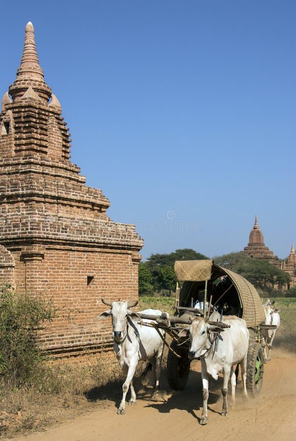 Rural Transport - Bagan - Myanmar (Burma) Royalty Free Stock Images