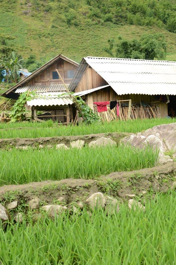 Rural Vietnam. Green mountains near Sapa, Vietnam stock images