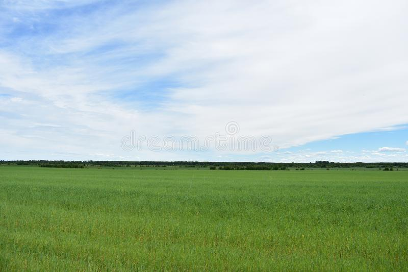 Rural village field green lush grass sky clouds stock photos