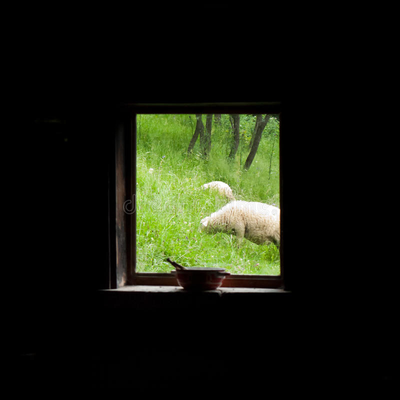 Download Rural window view stock photo. Image of nature, grass - 25982168