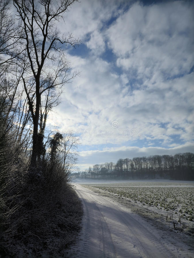 Rural winter scene royalty free stock images