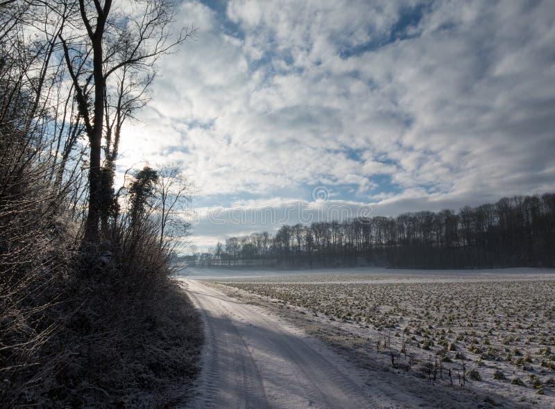 Rural winter scene royalty free stock image
