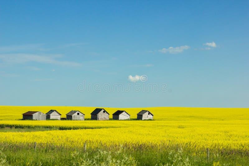 rurale fotografia stock libera da diritti
