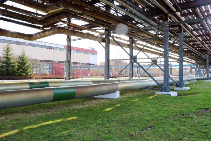 Rurociąg wiadukt z żelaznymi ośniedziałymi drymbami dla pompować ciecz, kondensat z ujściami i odcieki w rafinerii ropy naftowej, fotografia stock
