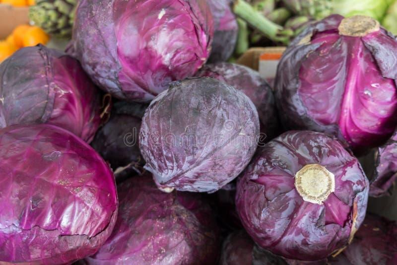 Rurple sålde röd organisk kål på stadsmarknaden royaltyfria bilder
