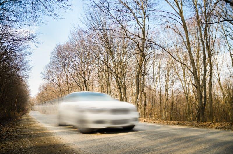 Rusa bilen i skogen arkivfoton
