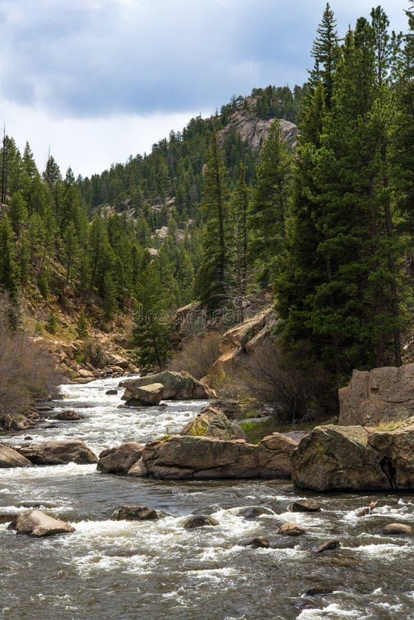Rusa strömflodvatten till och med den elva mil kanjonen Colorado arkivbild