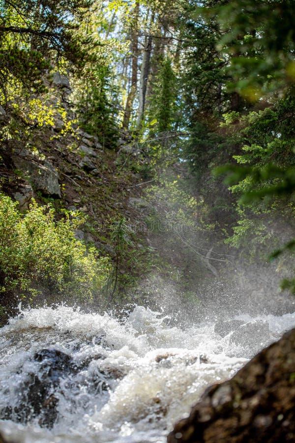 Rusa vattenfallet med frodigt gräs i Rocky Mountain National Park royaltyfri fotografi