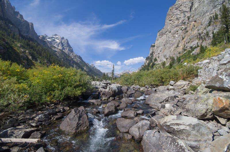 Ruscello del chiacchierio in canyon della cascata immagine stock libera da diritti