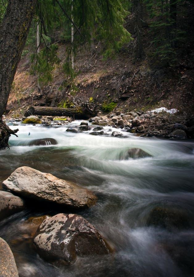 Free Rushing Creek Royalty Free Stock Image - 14618106
