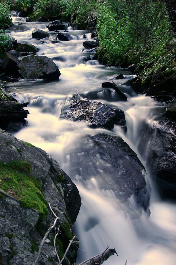 Download Rushing Creek stock photo. Image of rocks, flowing, murmuring - 467630