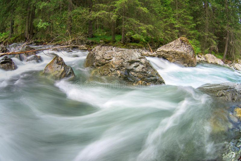 Rushing mountain river. In the forest royalty free stock photography