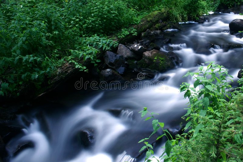 Rushing Stream royalty free stock photography