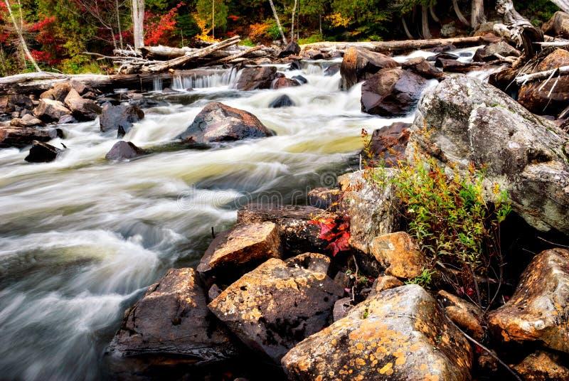 Rushing Stream in the Autumn stock image