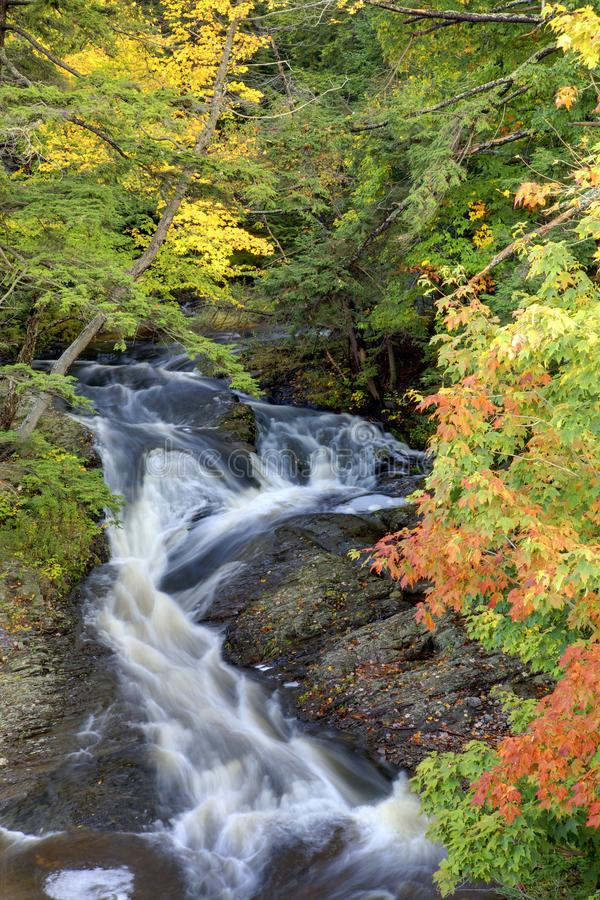 Rushing Stream in the Fall. A beautiful flowing stream of water runs through an autumn forest stock photos