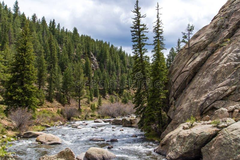 Rushing stream river water through Eleven Mile Canyon Colorado stock photo