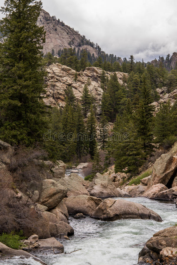 Rushing stream river water through Eleven Mile Canyon Colorado. Rushing water and small rapids over and around rocks in canyon river rocky stream. Beautiful royalty free stock photos