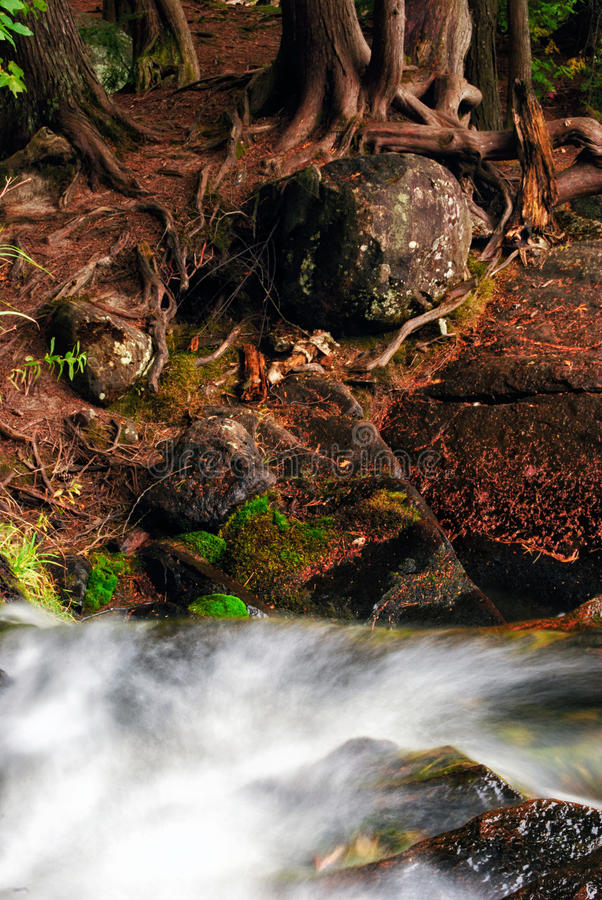 Rushing Stream by the Rocky Banks stock images