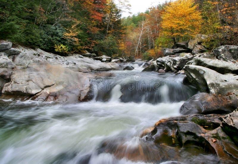 Download Rushing Water stock photo. Image of beautiful, national - 16056918