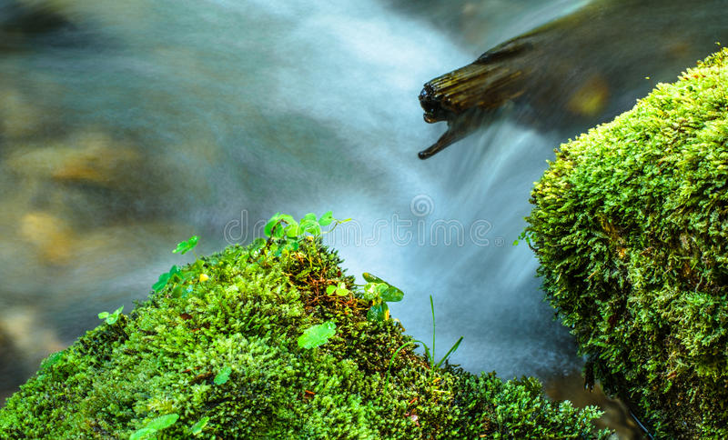 Rushing water in a river. A close up view of the rushing water in a river royalty free stock images