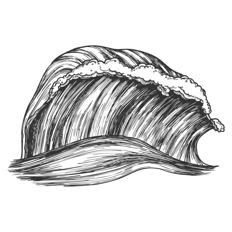 Rushing Wind Tropical Ocean Marine Wave Vector royalty free illustration