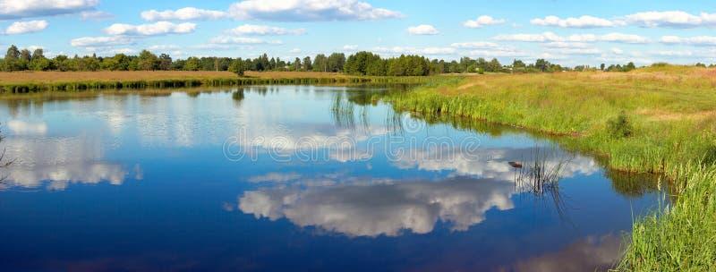 Rushy het meerpanorama van de zomer stock afbeeldingen