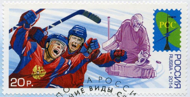 RUSIA - 2014: jugadores del hockey sobre hielo de las demostraciones, deportes de invierno de la serie fotos de archivo libres de regalías