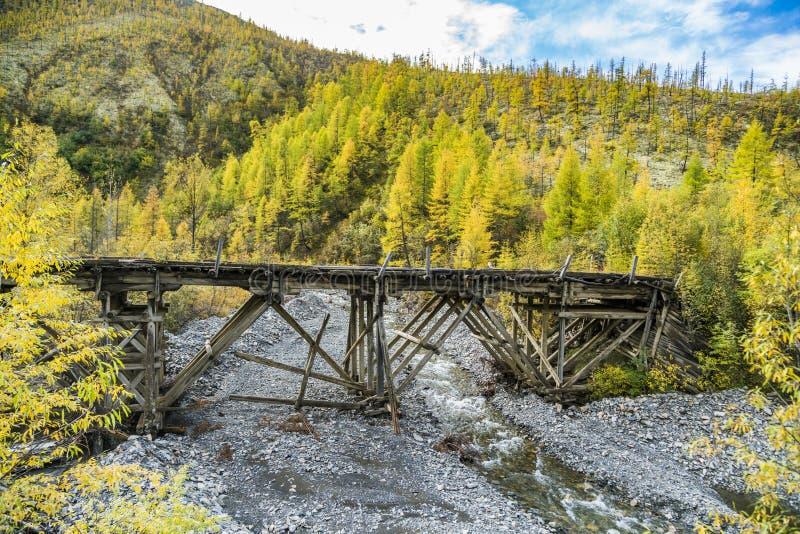 Rusia Naturaleza del Extremo Oriente: Puente de madera en el camino forestal fotografía de archivo