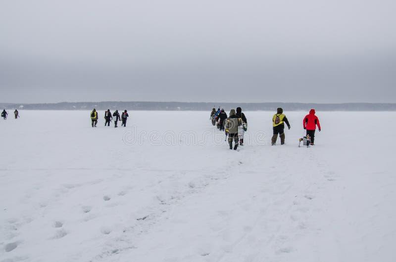 Rusia, pesca del invierno, competencias de la pesca del hielo, bajo, zona acotada de pesca, trastos, hielo, invierno, río, paisaj fotografía de archivo