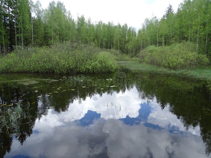 Rusia Un viaje a Rusia central Nelidovo Otoño imagen de archivo