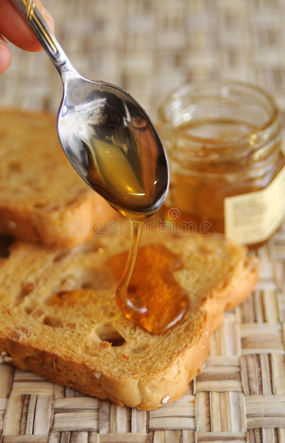 Rusk bread with honey stock images