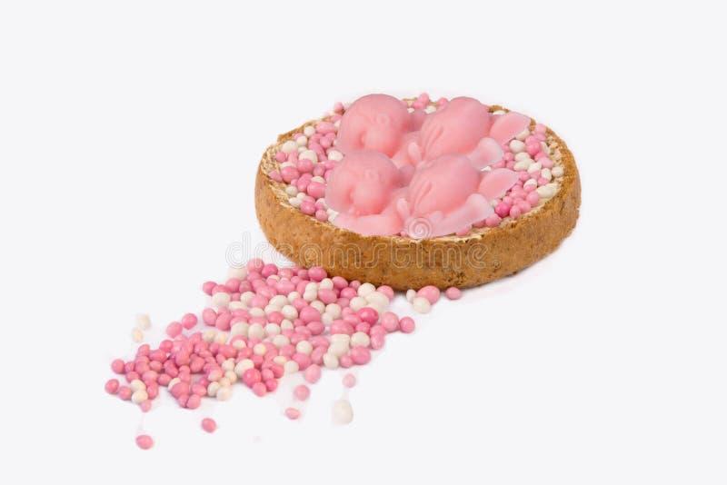 Rusk z różowymi myszami dla dziewczyna bliźniaków obrazy royalty free