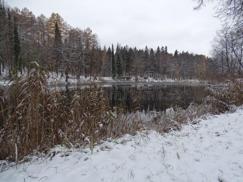 Rusland Gang rond Moskou De winter stock afbeelding
