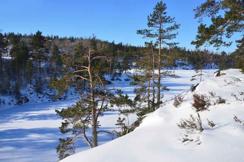 Rusland, Ladoga skerries Ijsopeenhoping op de kust van meer Ladoga stock fotografie