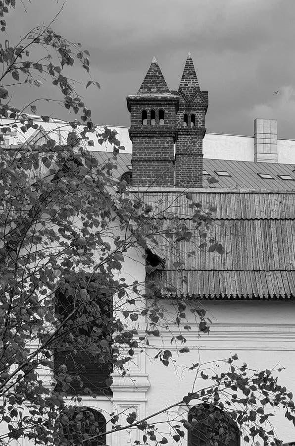 Rusland Moskou, Engelse Kamers Zwart-wit stedelijk de lentelandschap met een mooi dak van een historisch gebouw royalty-vrije stock foto
