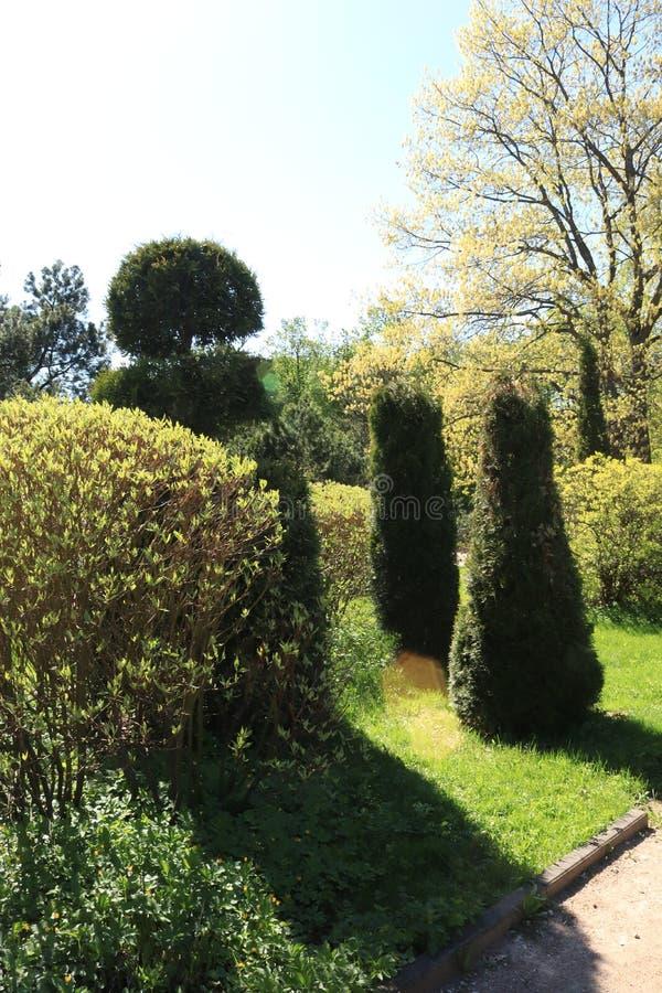 Rusland, Moskou, park, de zomerfoto van een installatie van de tuinsteeg stock afbeelding