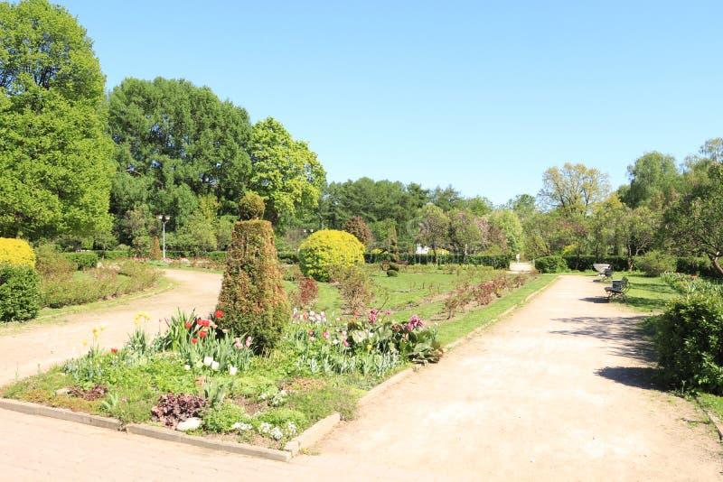 Rusland, Moskou, park, de zomerfoto van een tuinsteeg stock afbeelding